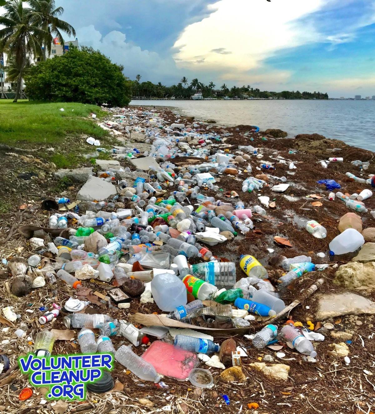Plastic Free Florida